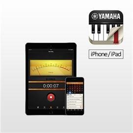 yamaha arius ydp 162 manual